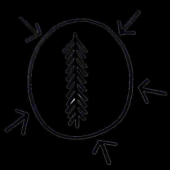 Le bénéfice 3 de Plume et de ses exercices de respiration